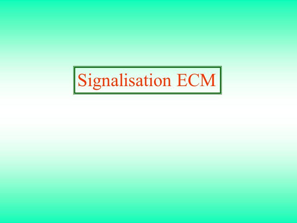 Signalisation ECM