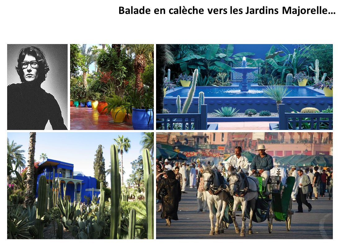 Balade en calèche vers les Jardins Majorelle…