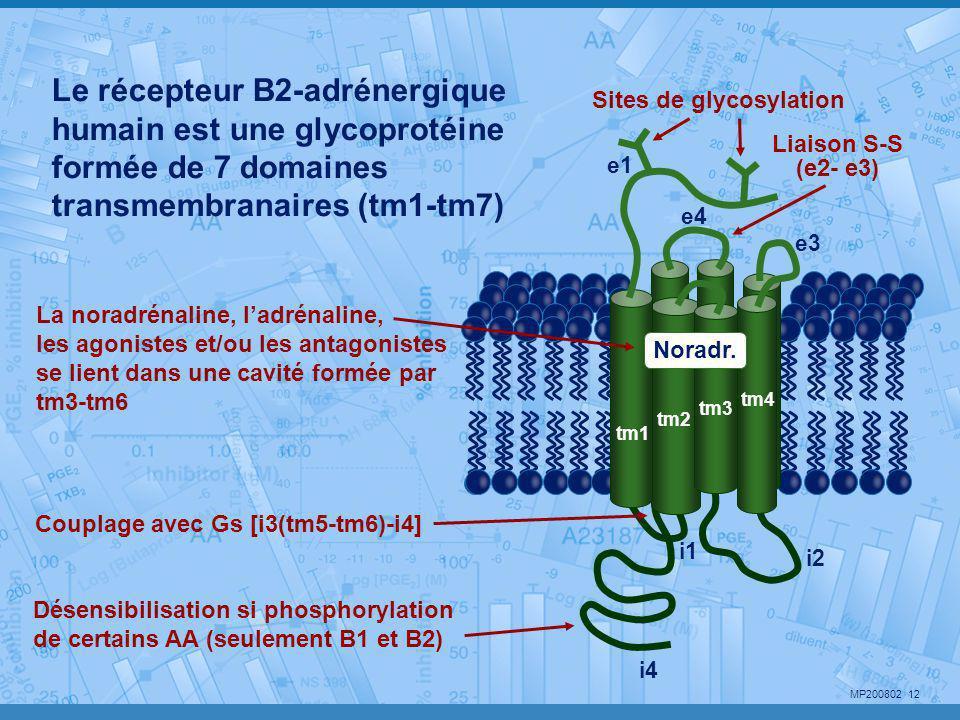 Le récepteur B2-adrénergique humain est une glycoprotéine formée de 7 domaines transmembranaires (tm1-tm7)