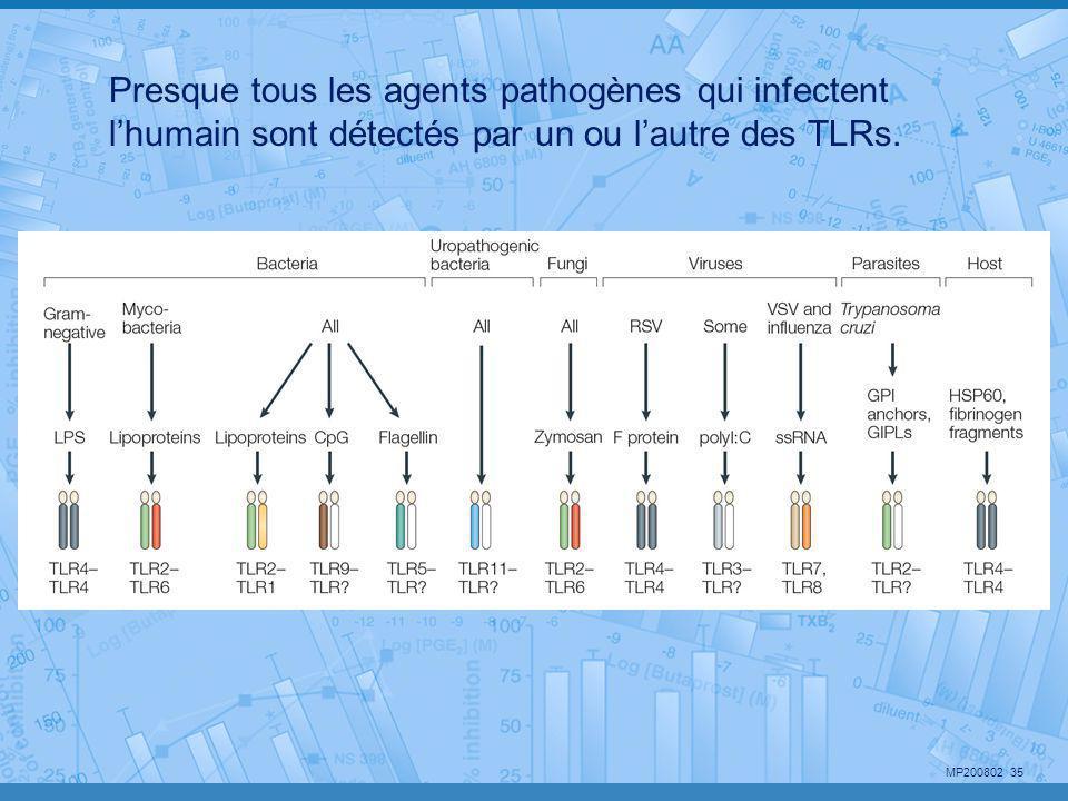 Presque tous les agents pathogènes qui infectent l'humain sont détectés par un ou l'autre des TLRs.