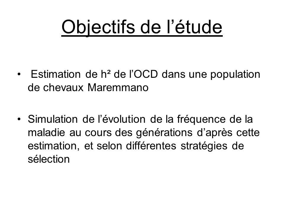 Objectifs de l'étude Estimation de h² de l'OCD dans une population de chevaux Maremmano.