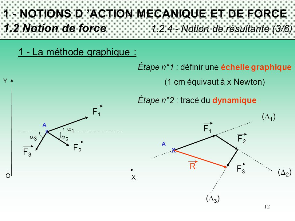 (1 cm équivaut à x Newton)