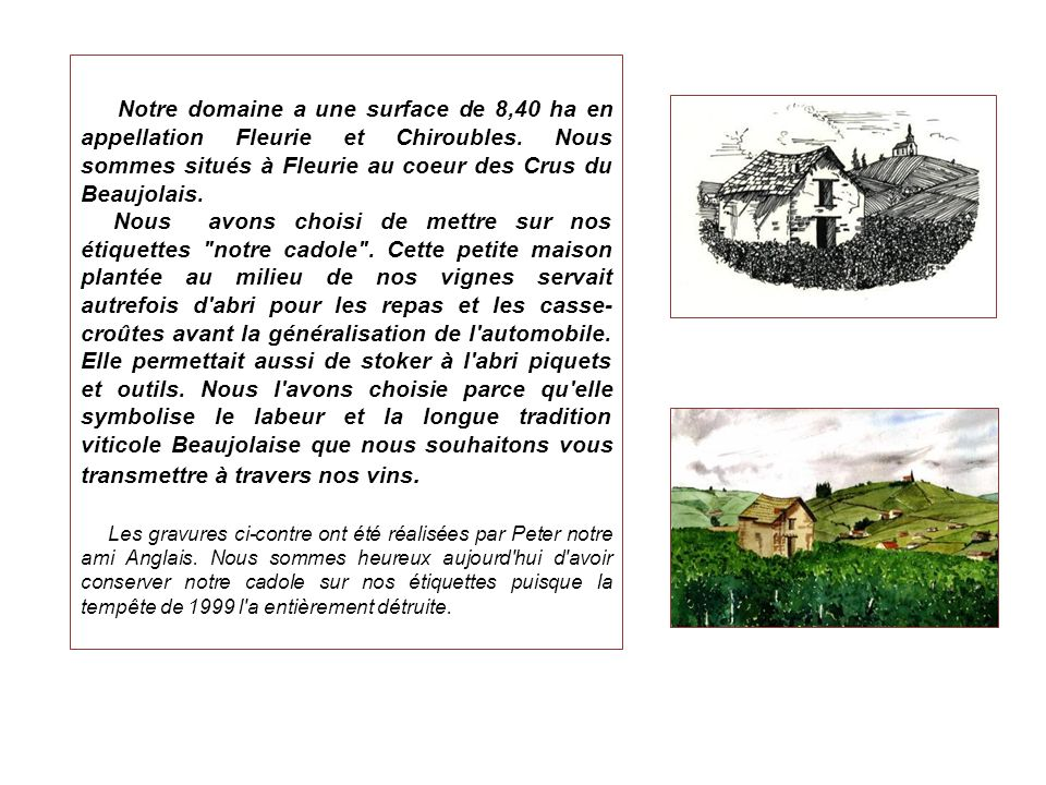 Notre domaine a une surface de 8,40 ha en appellation Fleurie et Chiroubles. Nous sommes situés à Fleurie au coeur des Crus du Beaujolais.