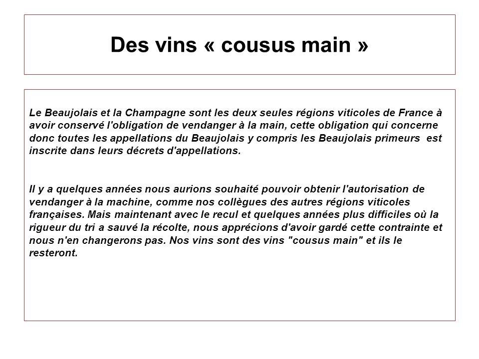 Des vins « cousus main »
