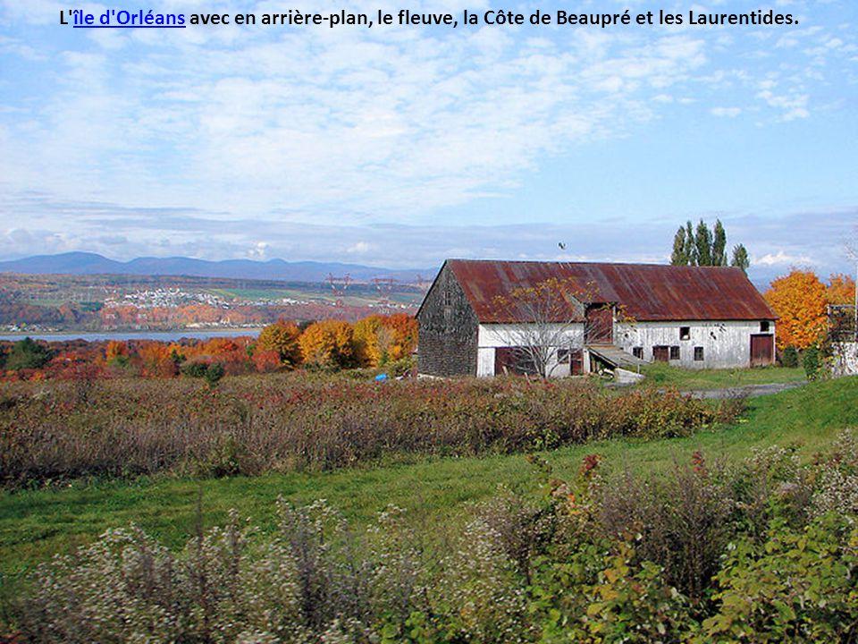 L île d Orléans avec en arrière-plan, le fleuve, la Côte de Beaupré et les Laurentides.