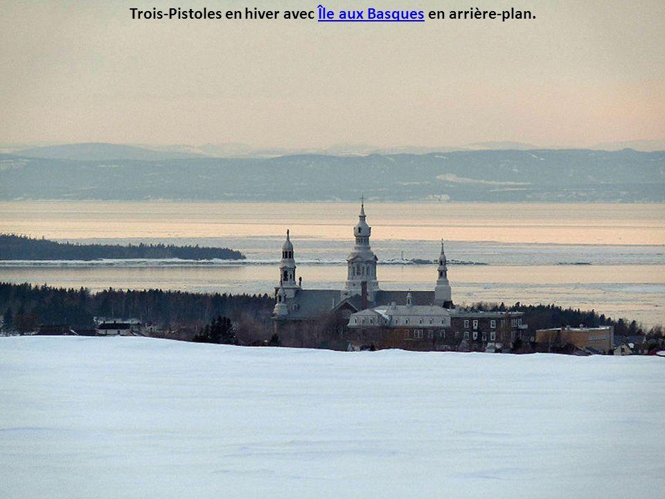 Trois-Pistoles en hiver avec Île aux Basques en arrière-plan.