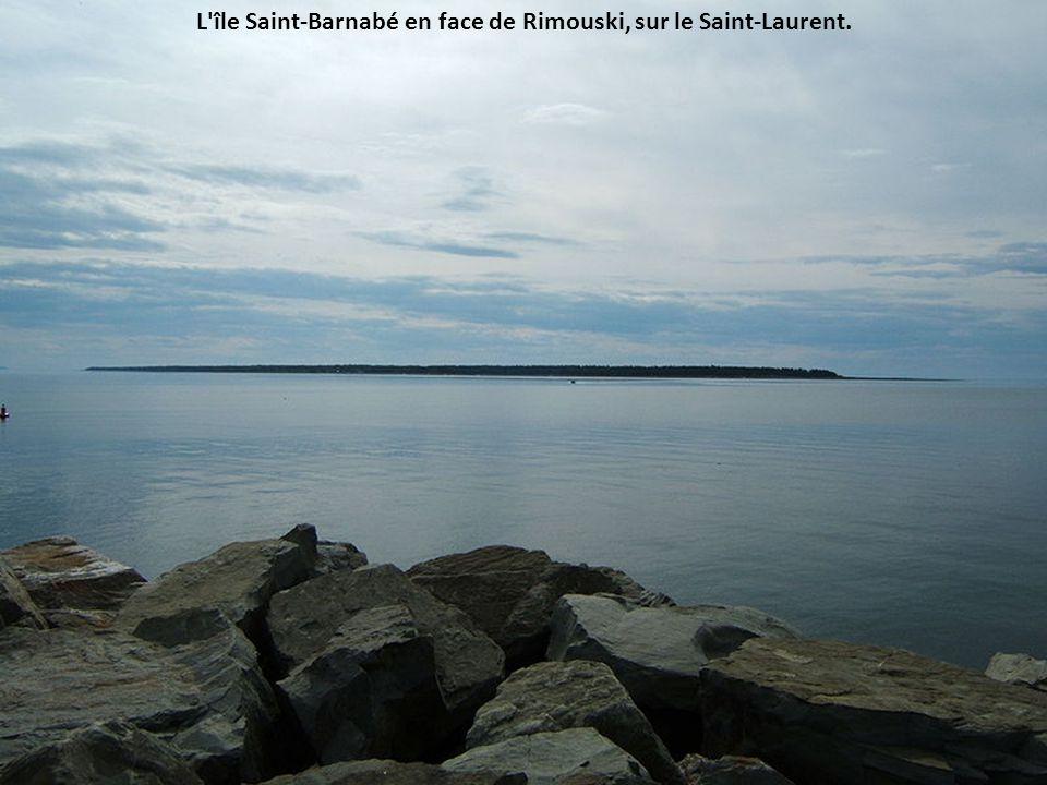 L île Saint-Barnabé en face de Rimouski, sur le Saint-Laurent.