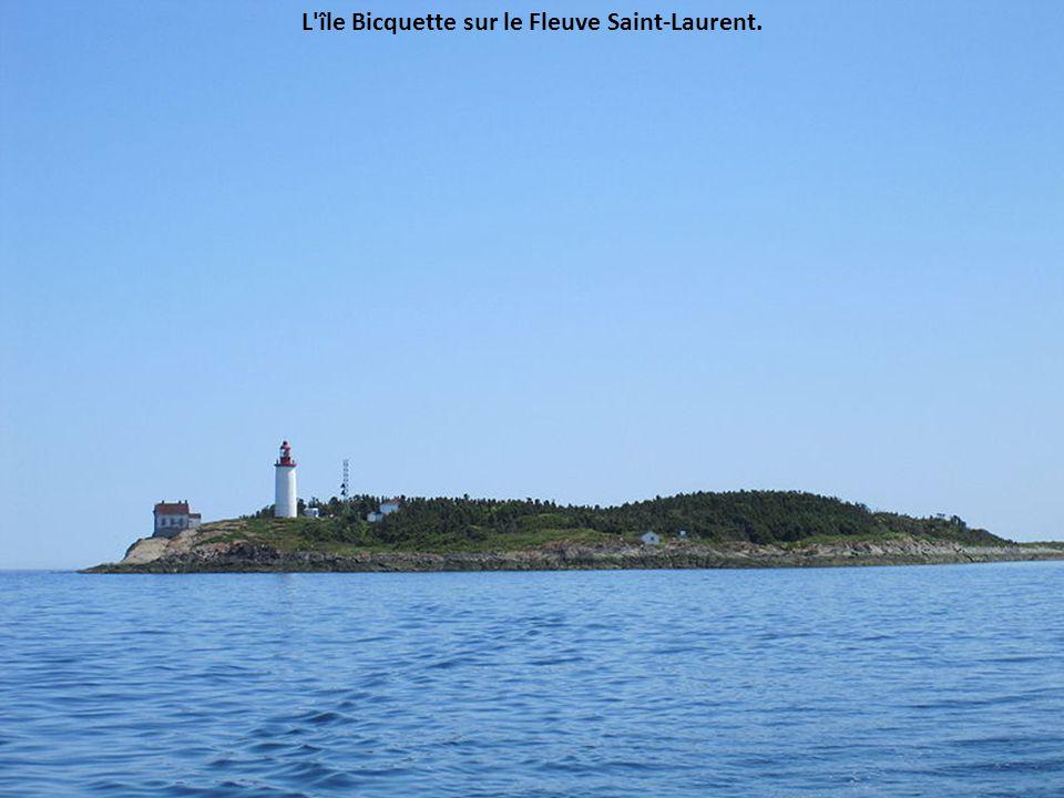 L île Bicquette sur le Fleuve Saint-Laurent.