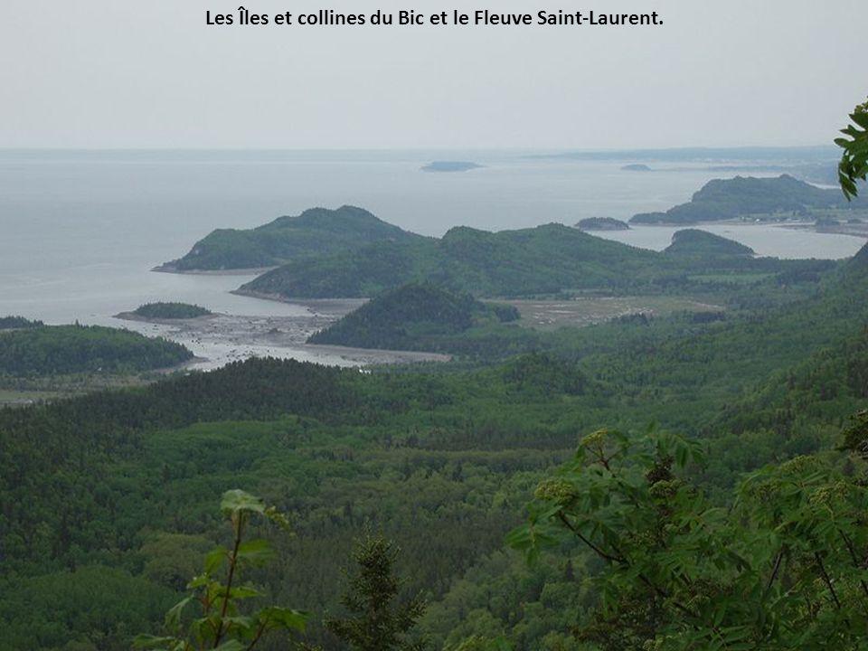 Les Îles et collines du Bic et le Fleuve Saint-Laurent.