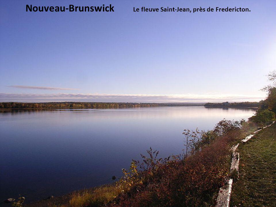 Nouveau-Brunswick Le fleuve Saint-Jean, près de Fredericton.