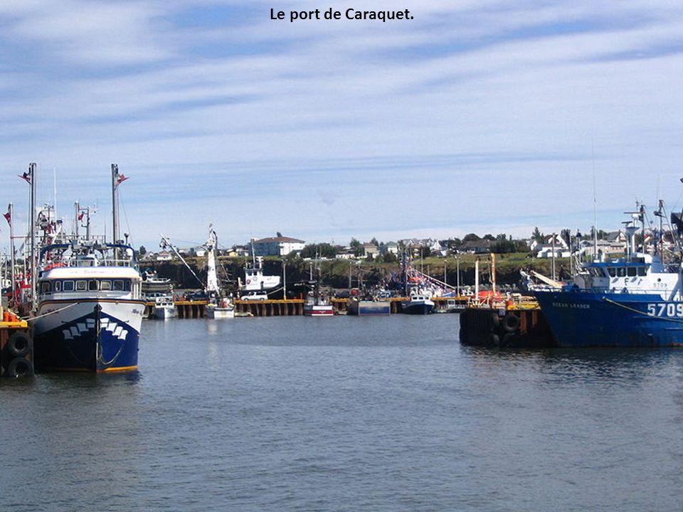 Le port de Caraquet.