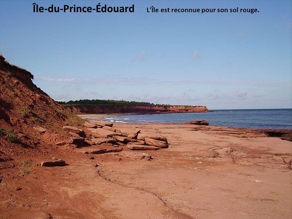 Île-du-Prince-Édouard L Île est reconnue pour son sol rouge.