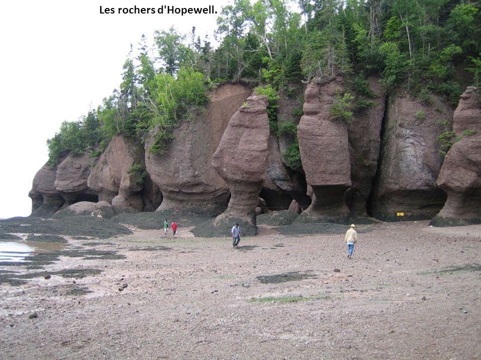 Les rochers d Hopewell.