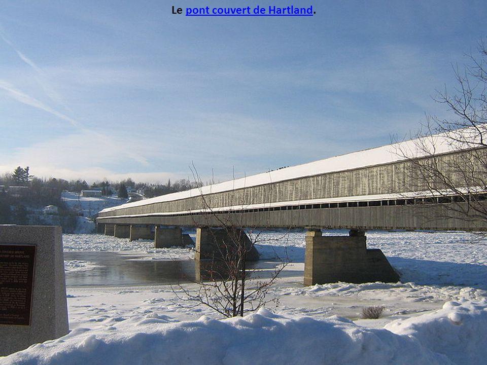 Le pont couvert de Hartland.