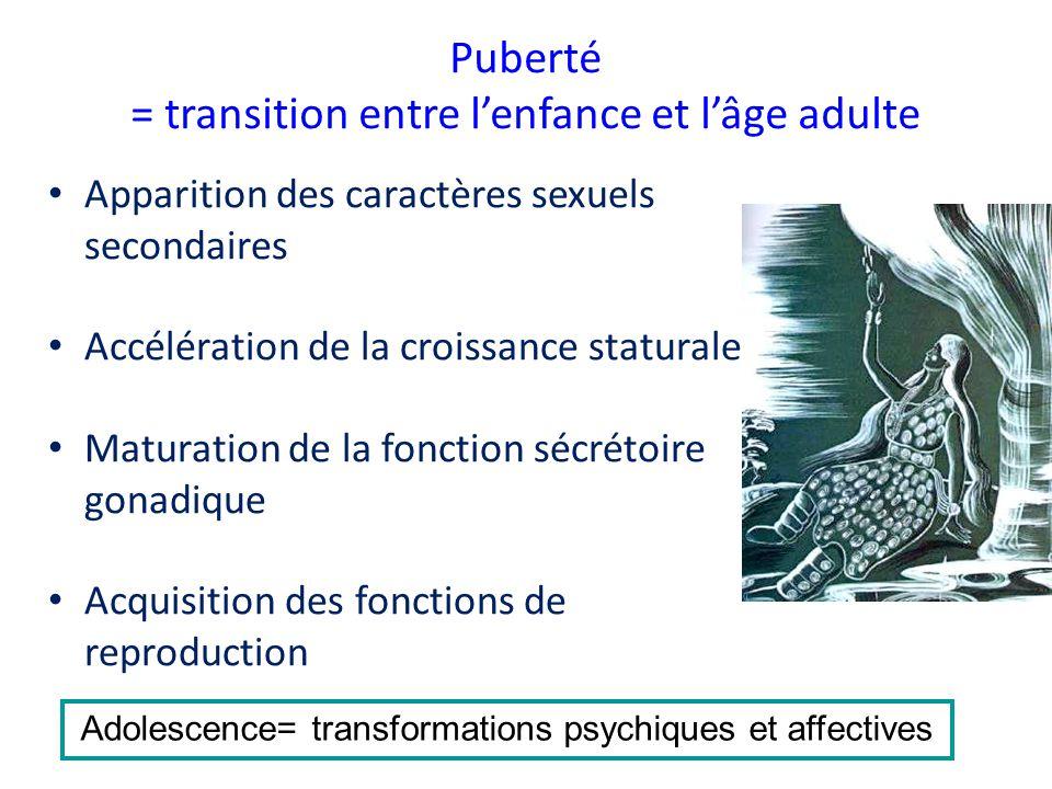 Puberté = transition entre l'enfance et l'âge adulte