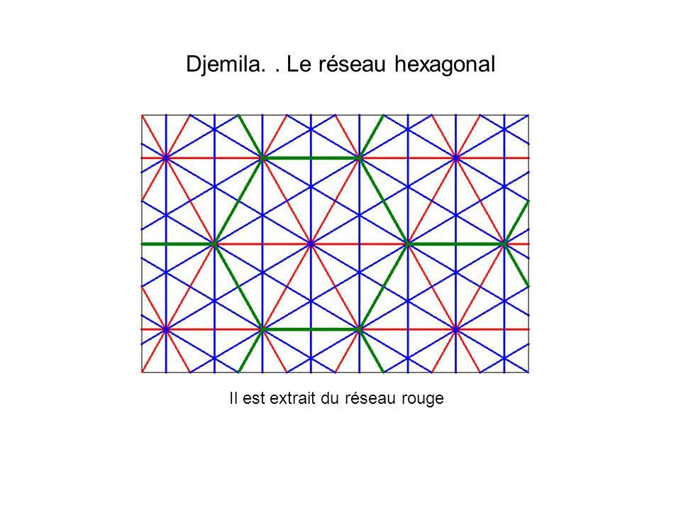 Djemila. . Le réseau hexagonal