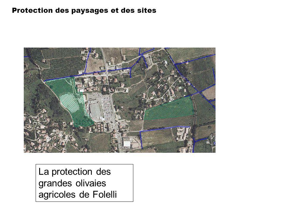 La protection des grandes olivaies agricoles de Folelli