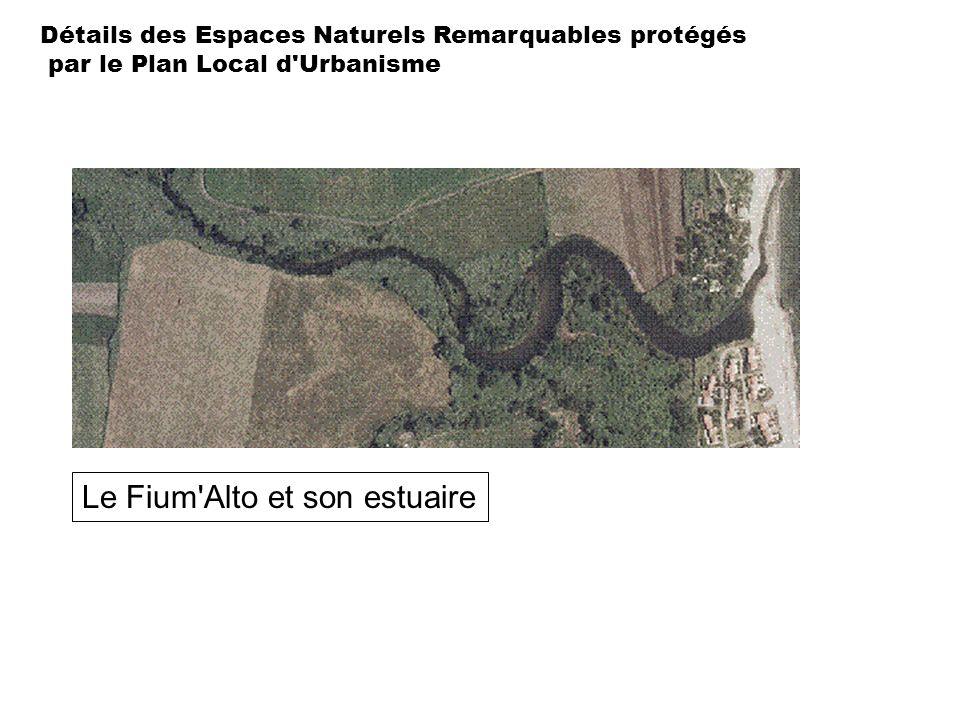 Le Fium Alto et son estuaire