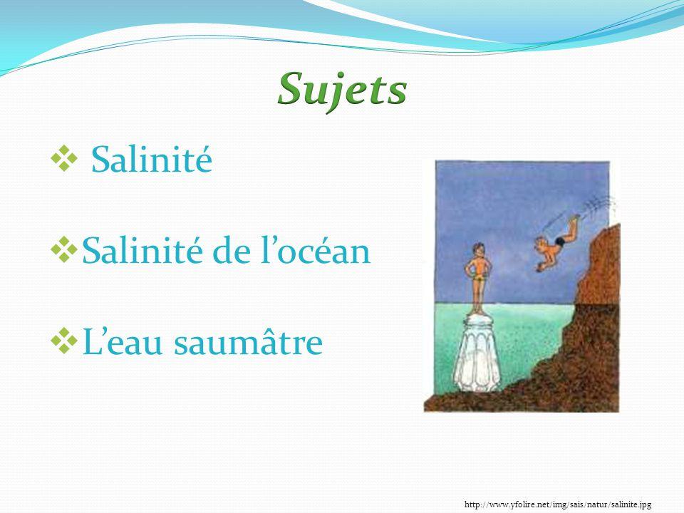 Sujets Salinité Salinité de l'océan L'eau saumâtre