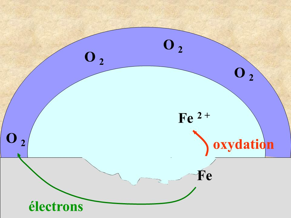 O 2 O 2 O 2 Fe 2 + O 2 oxydation Fe électrons