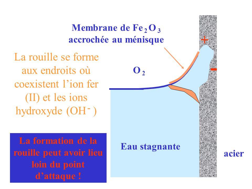 Eau stagnante acier. O 2. + - Membrane de Fe 2 O 3 accrochée au ménisque.