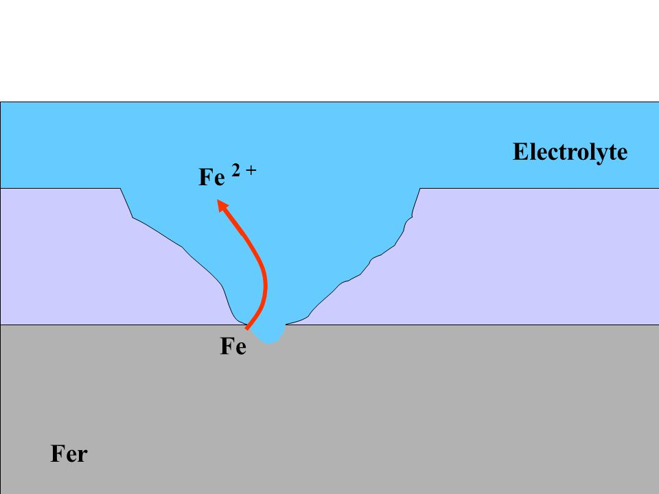 Electrolyte Fe 2 + Fe Fer