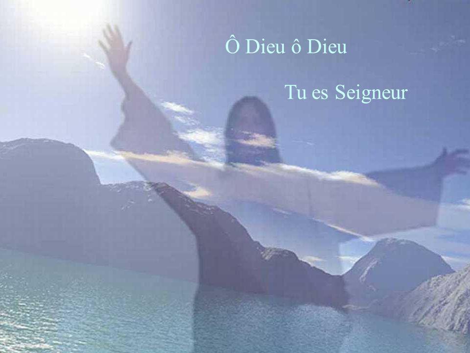 Ô Dieu ô Dieu Tu es Seigneur