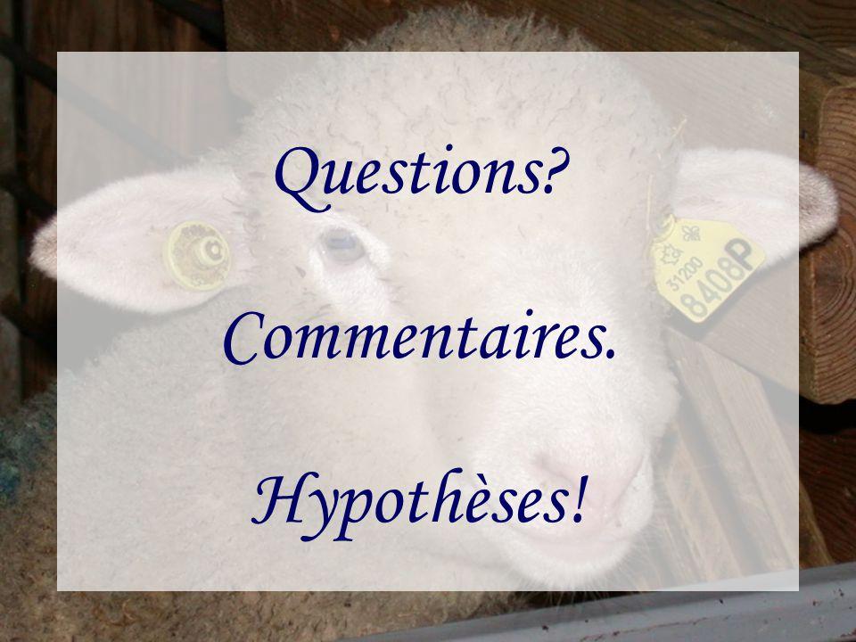 Questions Commentaires. Hypothèses!