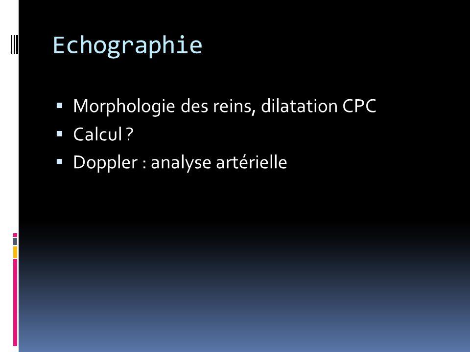 Echographie Morphologie des reins, dilatation CPC Calcul
