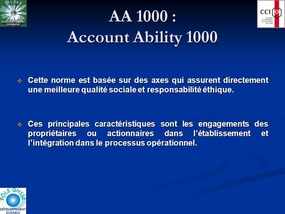 AA 1000 : Account Ability 1000 Cette norme est basée sur des axes qui assurent directement une meilleure qualité sociale et responsabilité éthique.