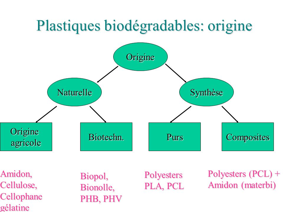 Plastiques biodégradables: origine