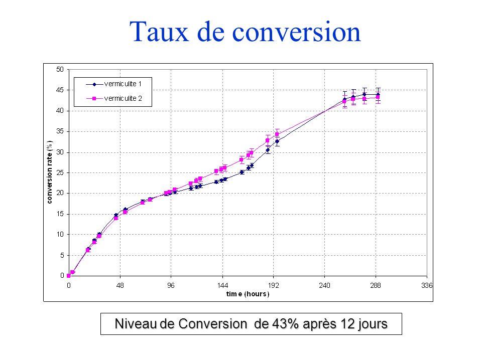 Niveau de Conversion de 43% après 12 jours