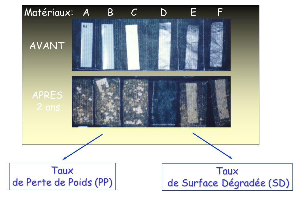 de Surface Dégradée (SD)
