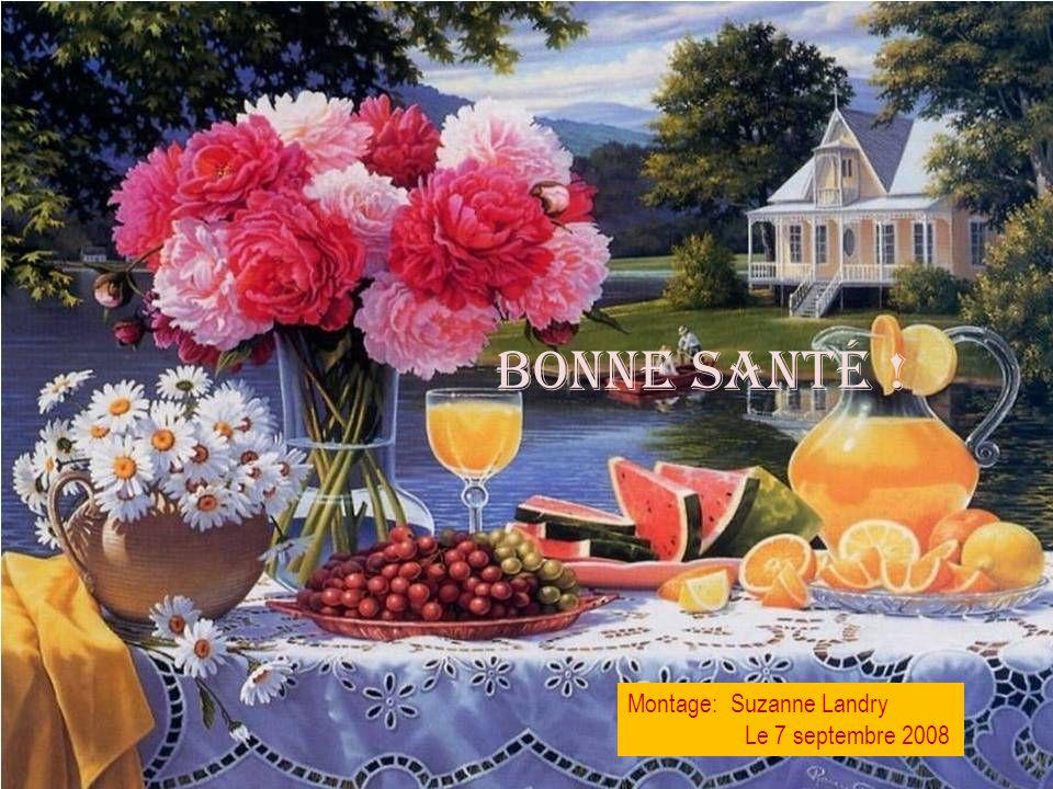 BONNE SANTÉ ! Montage: Suzanne Landry Le 7 septembre 2008