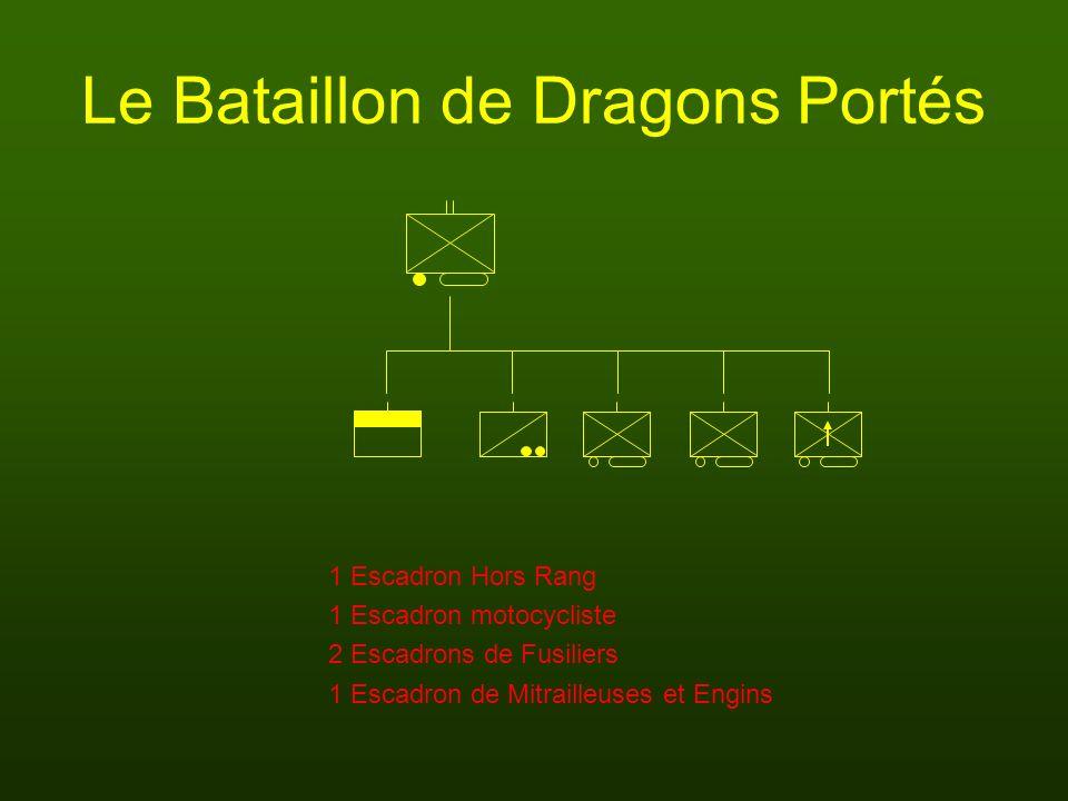 Le Bataillon de Dragons Portés