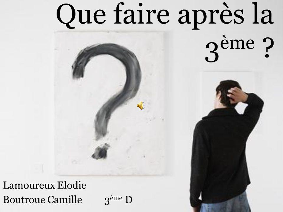 Lamoureux Elodie Boutroue Camille 3ème D
