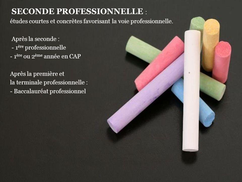 SECONDE PROFESSIONNELLE : études courtes et concrètes favorisant la voie professionnelle.