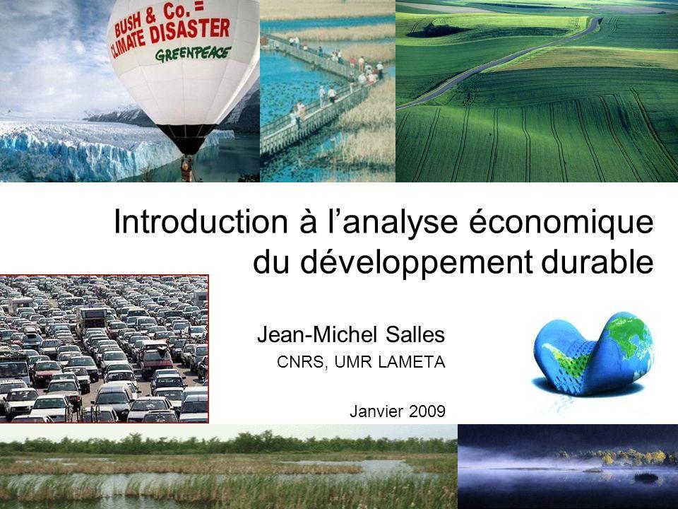 Introduction à l'analyse économique du développement durable