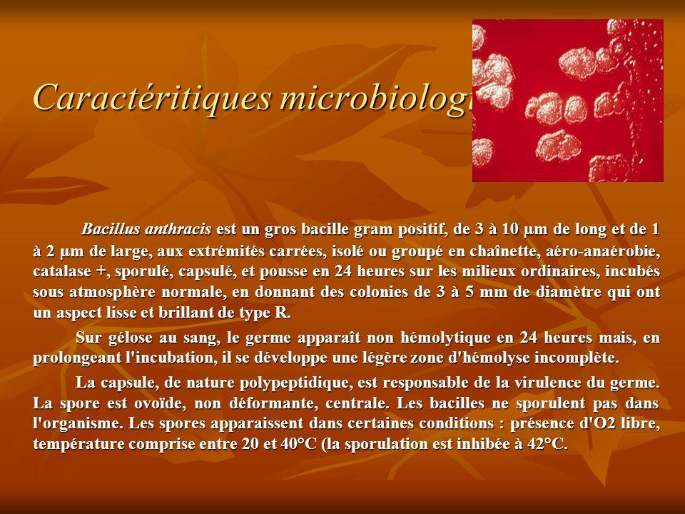 Caractéritiques microbiologiques