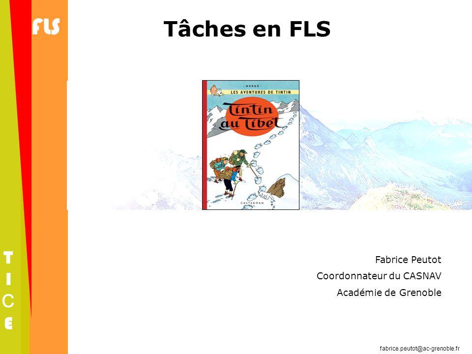 Tâches en FLS Fabrice Peutot Coordonnateur du CASNAV