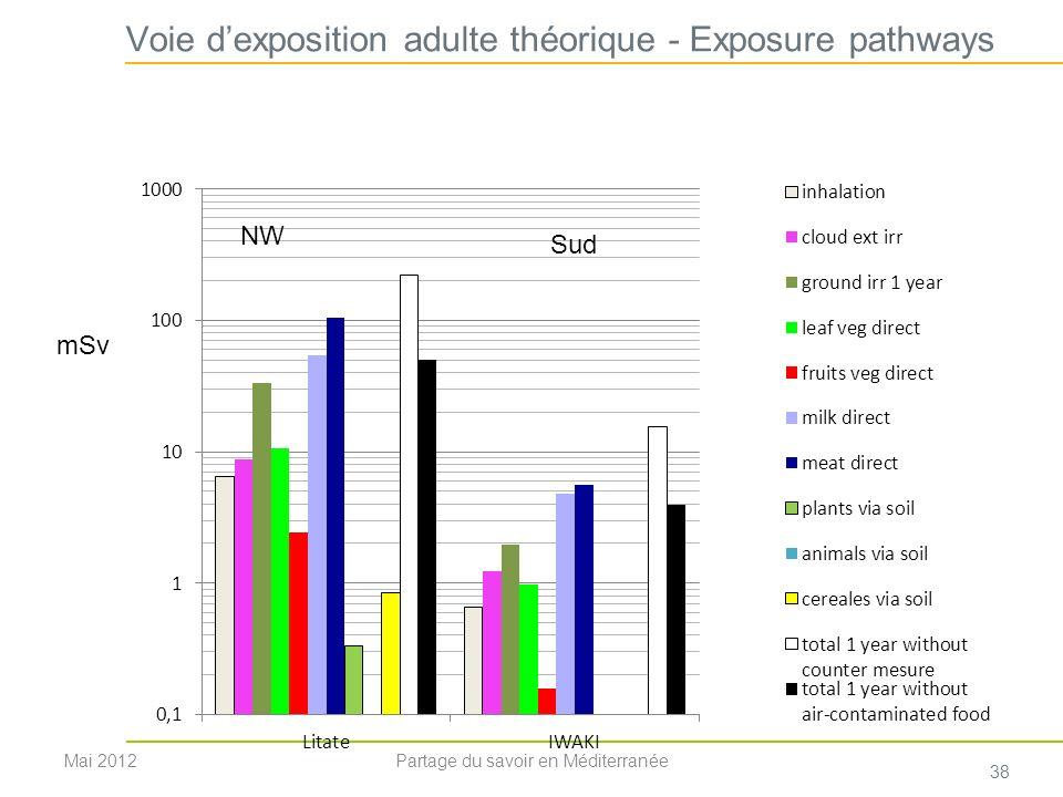 Voie d'exposition adulte théorique - Exposure pathways