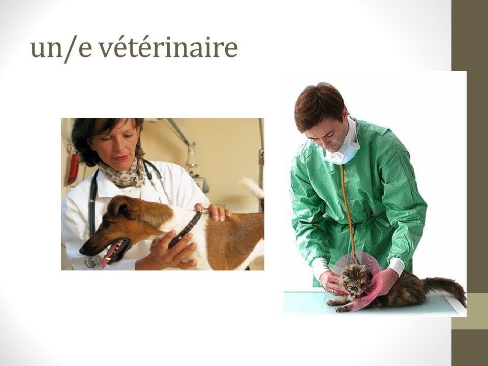un/e vétérinaire