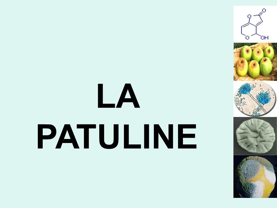 LA PATULINE