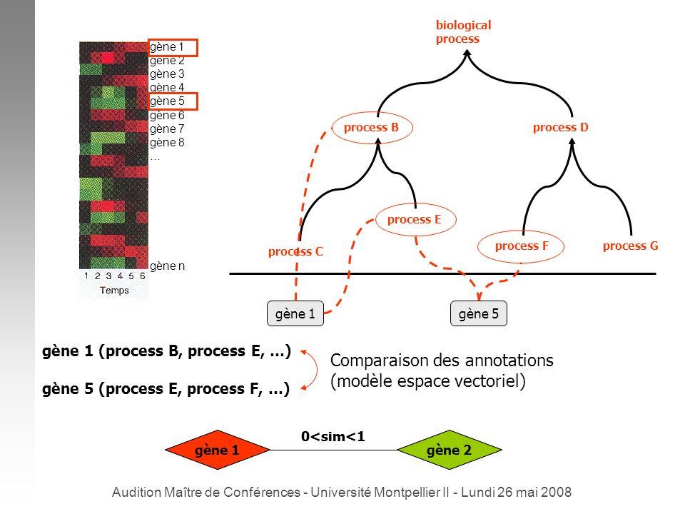 Comparaison des annotations (modèle espace vectoriel)