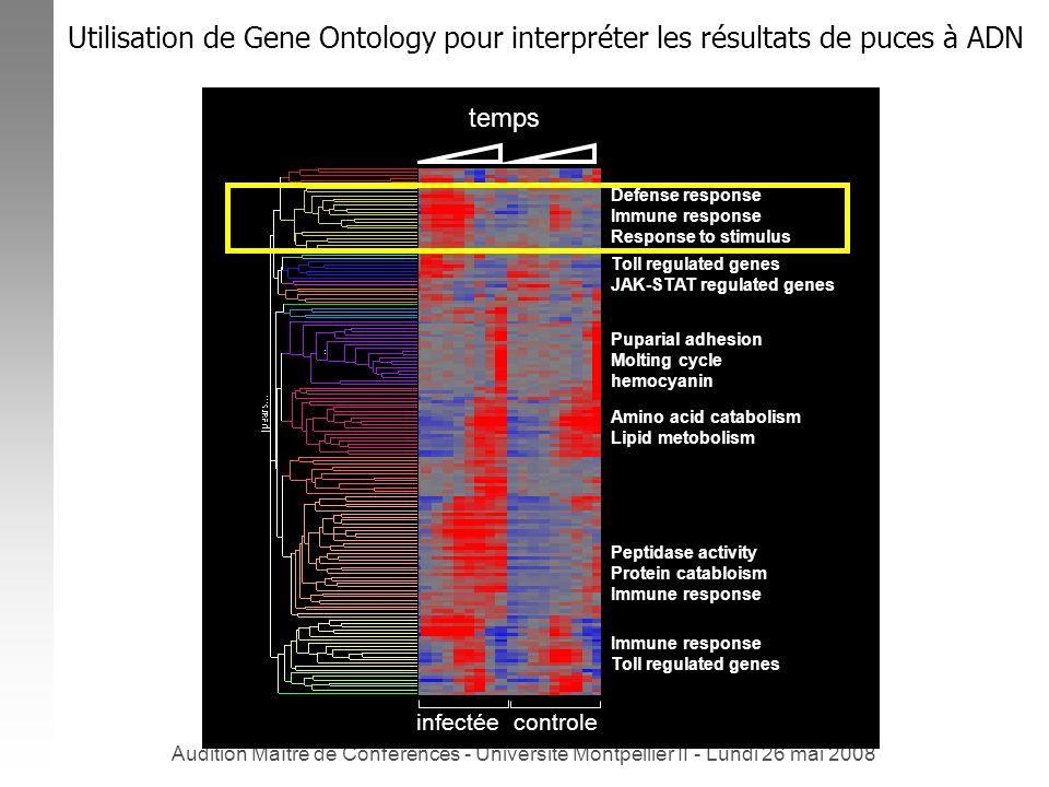 Utilisation de Gene Ontology pour interpréter les résultats de puces à ADN