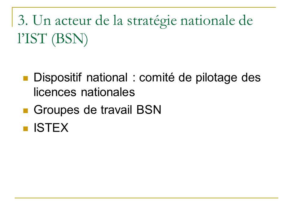 3. Un acteur de la stratégie nationale de l'IST (BSN)