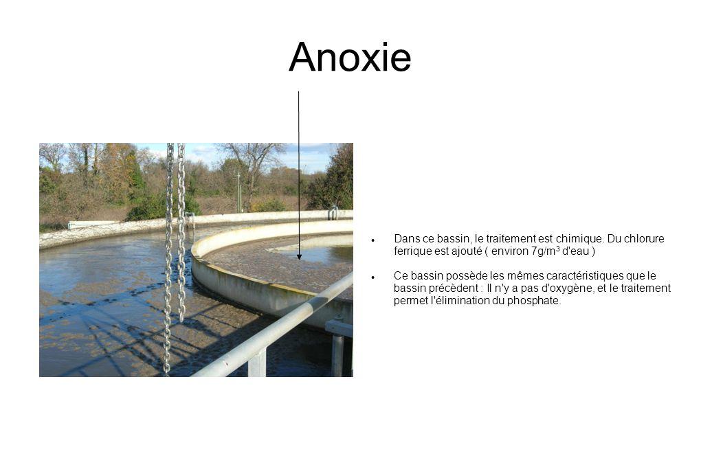 Anoxie Dans ce bassin, le traitement est chimique. Du chlorure ferrique est ajouté ( environ 7g/m3 d eau )