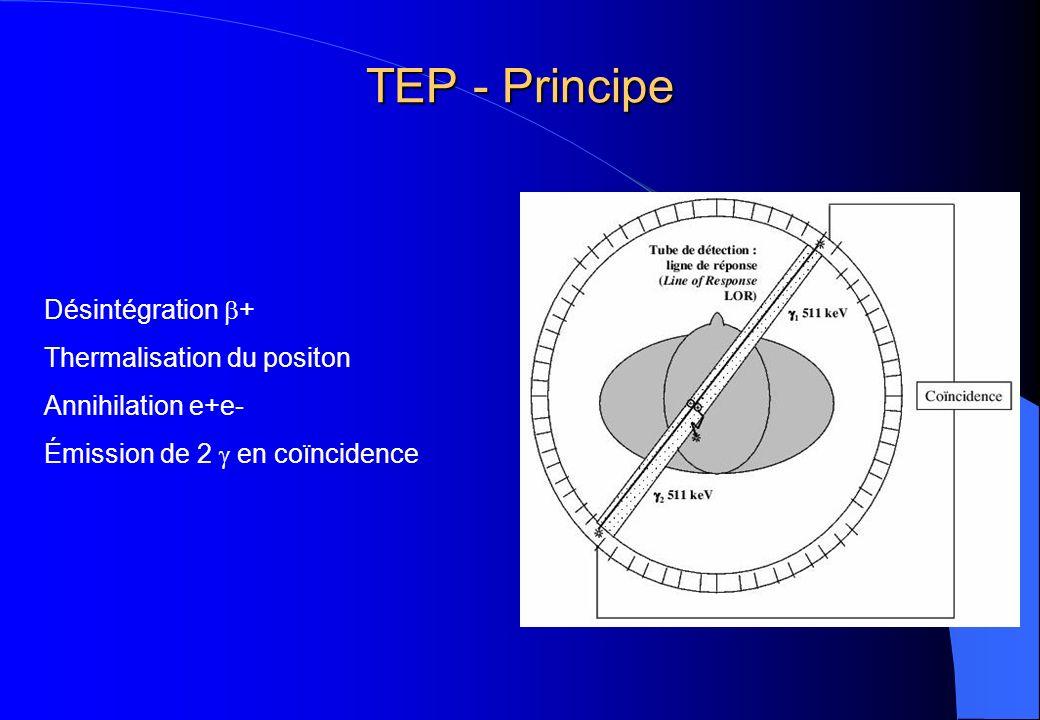 TEP - Principe Désintégration + Thermalisation du positon