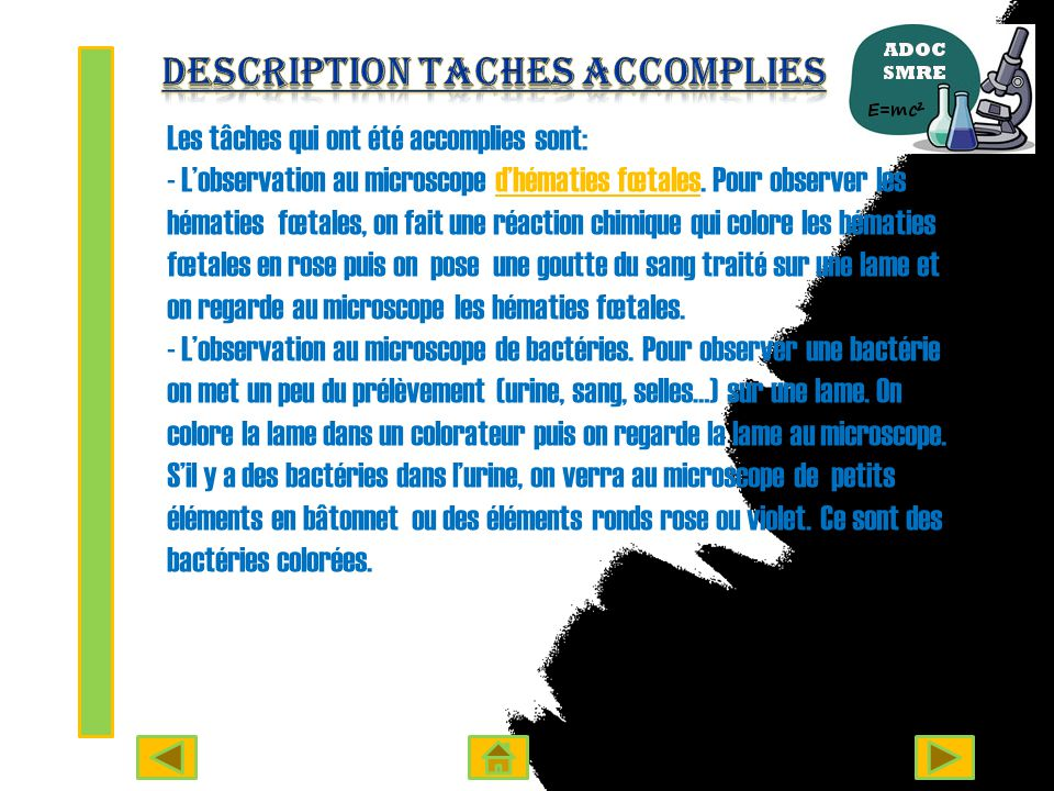 Description Taches accomplies