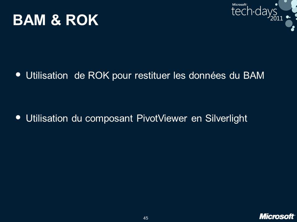BAM & ROK Utilisation de ROK pour restituer les données du BAM